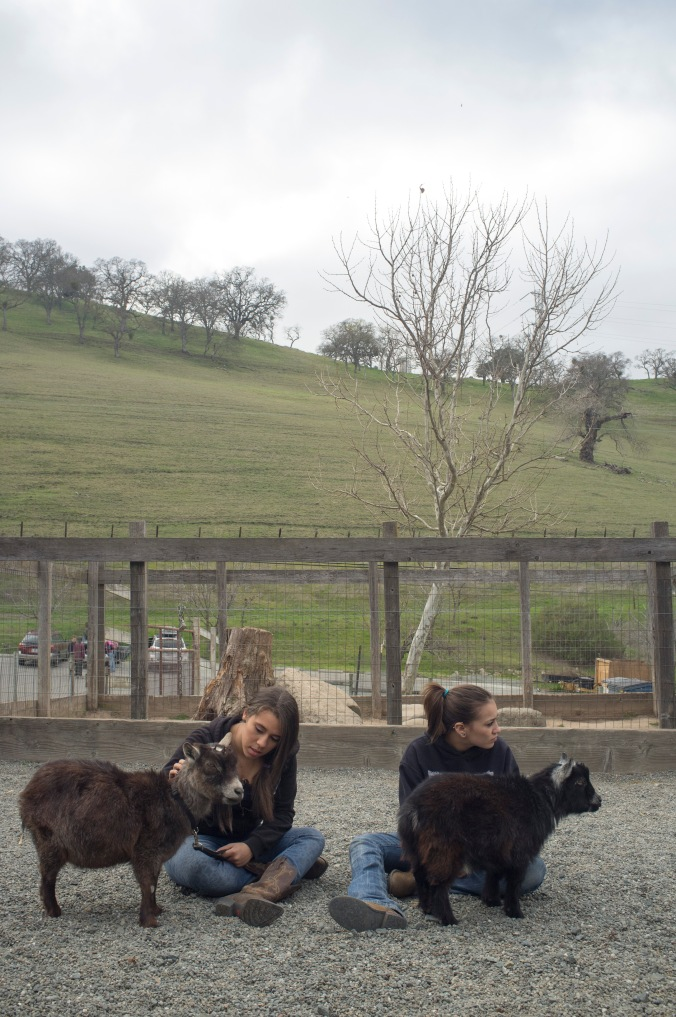 Allison and her friend Sydney with their pygmy goats at Borges Ranch in Walnut Creek, California.
