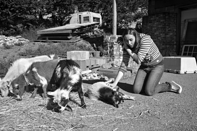 Chloe plays with the Montclair 4-H goats. Since most members of this urban club don't have space for animals at home, the goats live on a borrowed property in the hills of Oakland, California. Photo by Rafael Roy.
